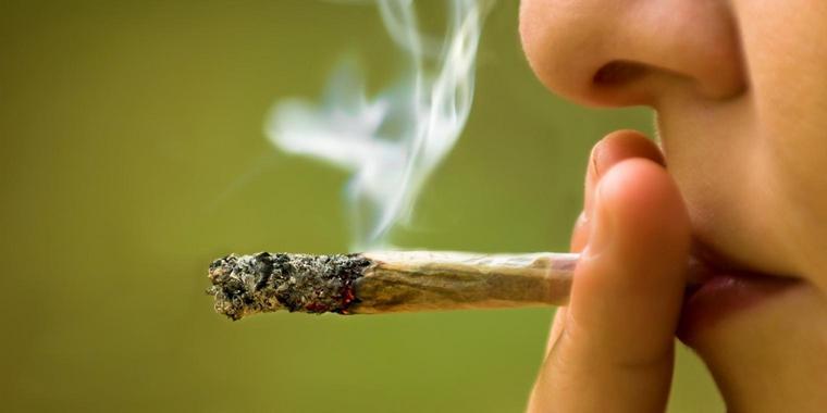 Propiedades curativas y controversias | Hoy 20 de abril es el Día Mundial de la Marihuana