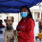Michis y firulais fueron atendidos en el Programa Mascota Protegida en el Tamarugal