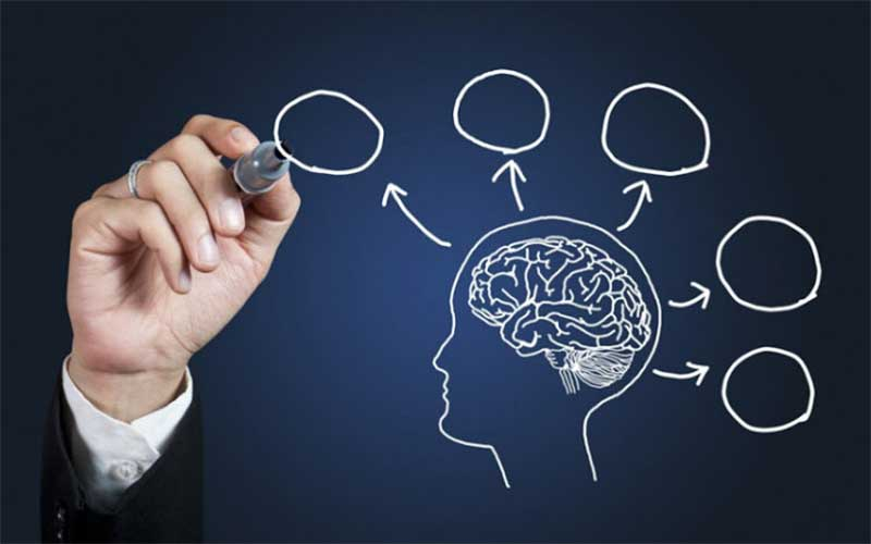 La neurociencia del talento: ¿es algo innato o se puede desarrollar? | Columna Dr. Franco Lotito C.